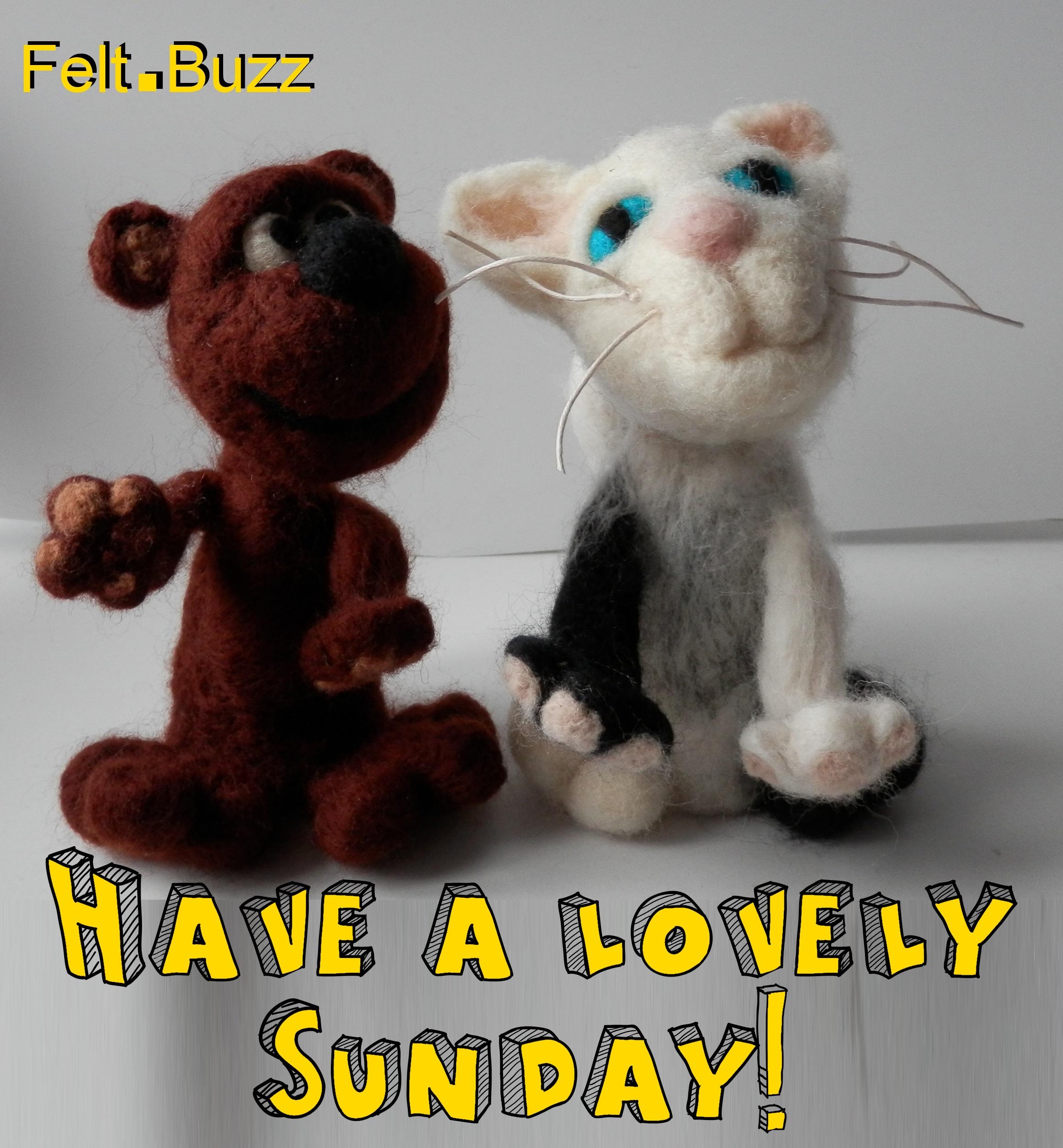 Have a fabulous Sunday everyone   Felt.Buzz