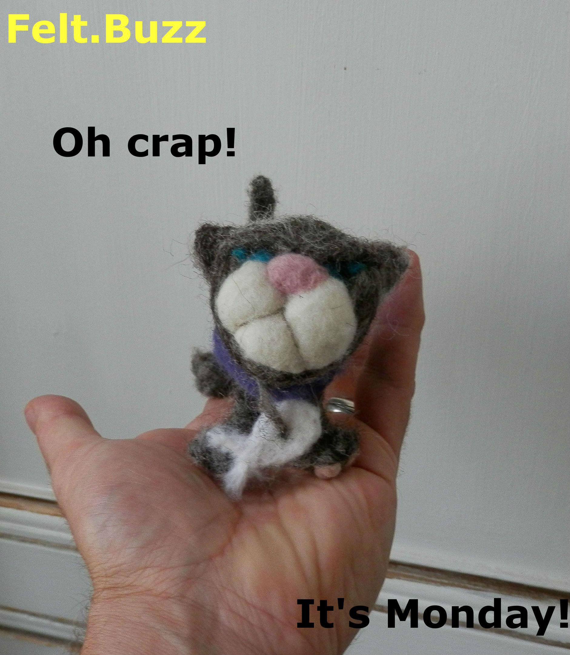 grumpy cat Crap its monday